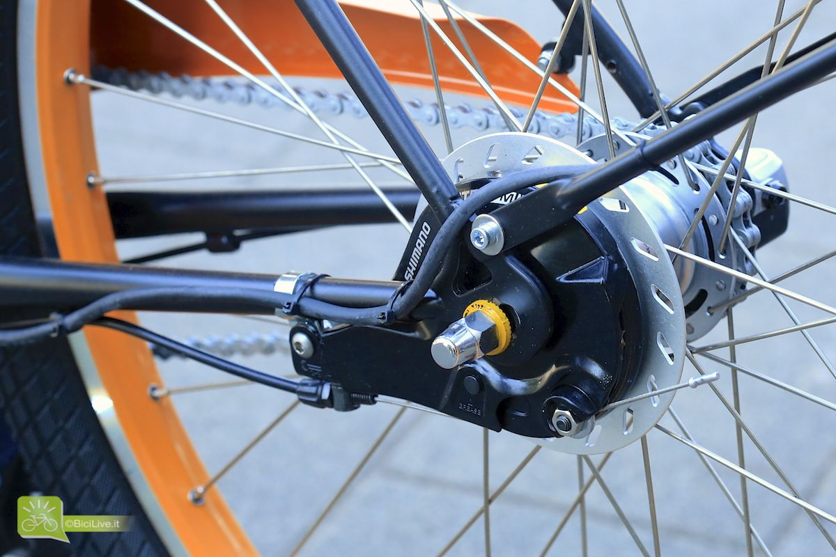 Bicicapace Rear hub Detail