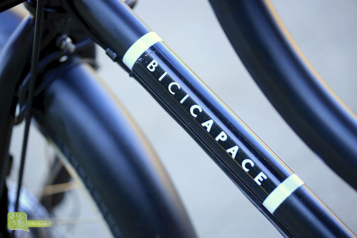 Bicicapace frame detail